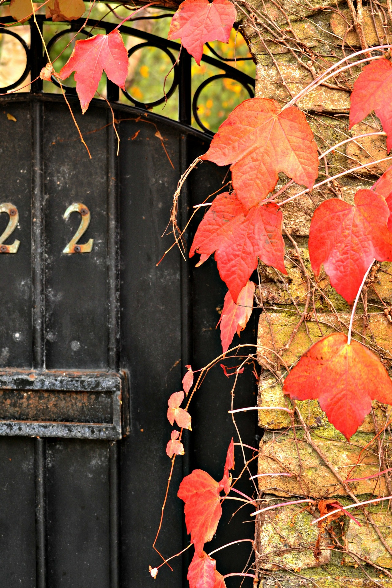 autumn-door